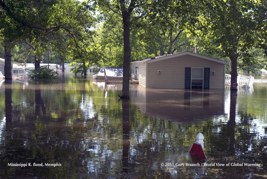 Flood of 2011 Caused