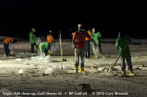 Gulf Oil Spill Photos